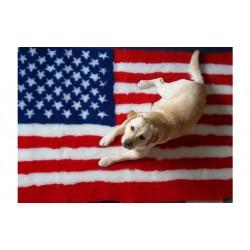 Vetbed - Amerikansk flag