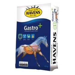 HAVENS Gastro+, 20 kg