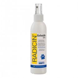 RADITAL Klorhexidin Spray